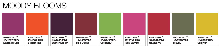 Pantone Moody Blooms Combinations