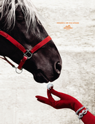 Hermès winter ad