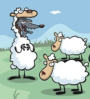 Beward the wolf in sheep's clothing